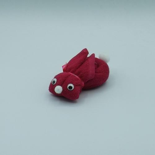 coniglio mini